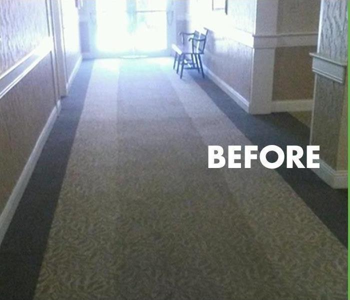 Carpet Cleaning, FL Before