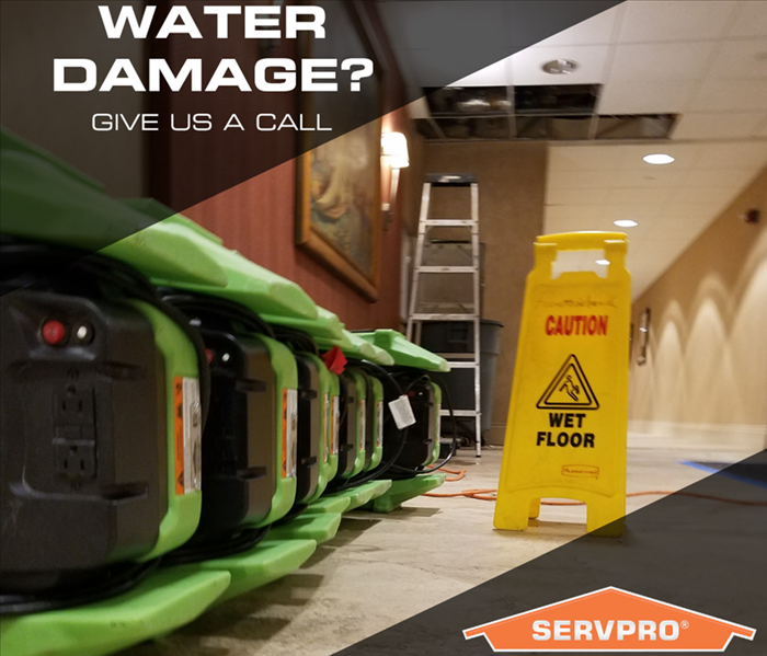 SERVPRO of Plantation Gallery Photos
