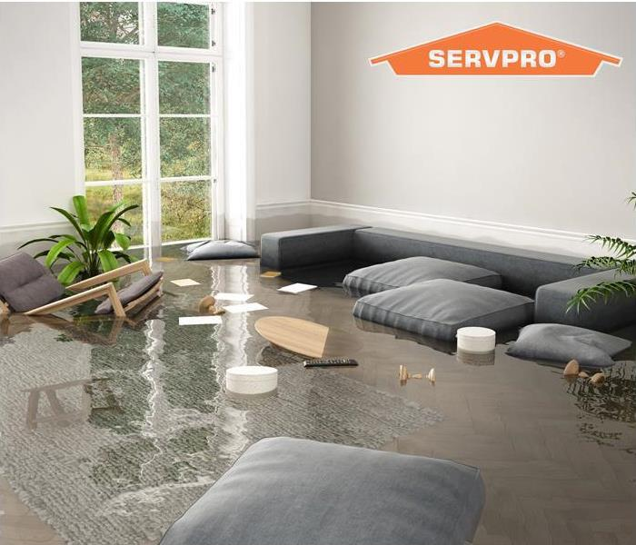 standing water in a living room