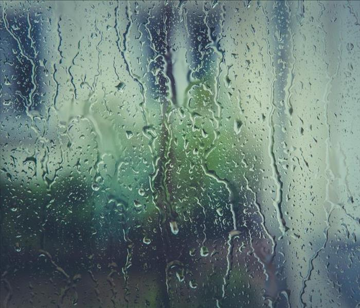 Rain drops on a window pane