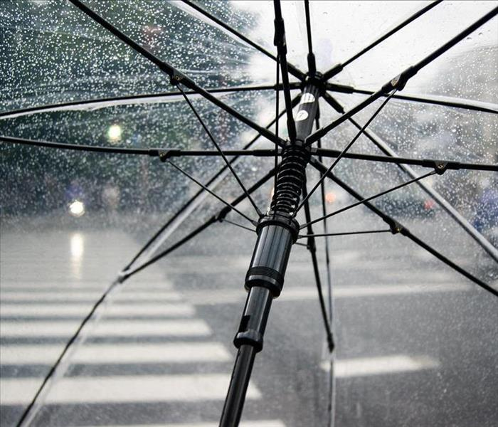 Peering through a wet transparent umbrella with a inner city street background