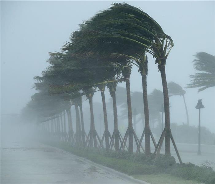 Storm Damage Types of Hurricane Damage : SERVPRO Plantation