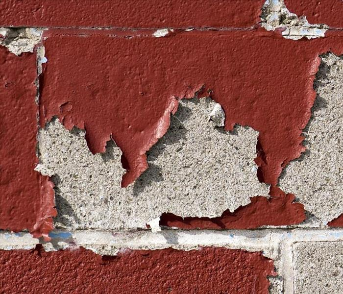 Building Services Is Your Family at Risk From Lead Paint?