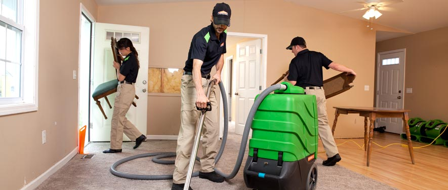 Plantation, FL cleaning services